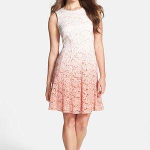 Trina Turk Carpenteria Ombre Lace Sleeveless Dress